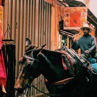 marrakech e i suoi mille profumi